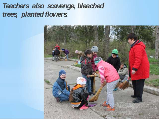 Teachers also scavenge, bleached trees, planted flowers.