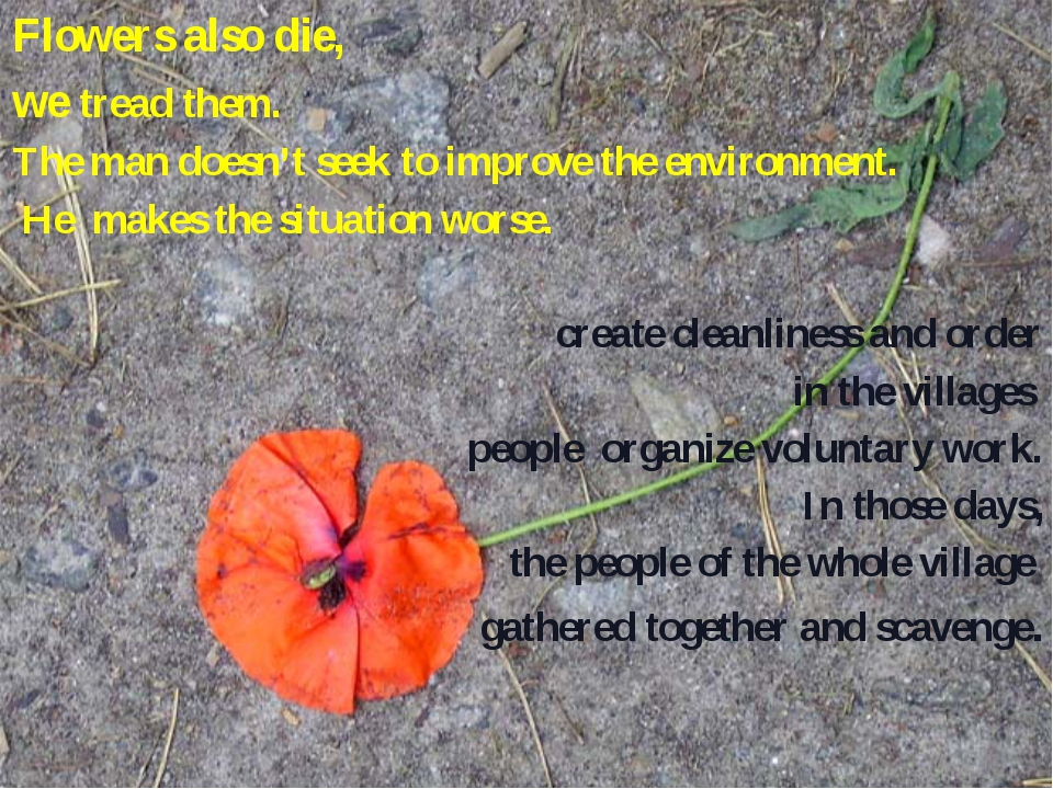 Flowers also die, we tread them. The man doesn't seek to improve the environm...