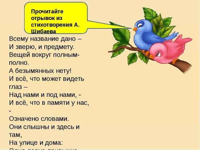 Главная мысль цветок на земле