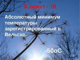 М. В. Ломоносов - 40 Какой закон открыл Михаил Васильевич Ломоносов? Закон со