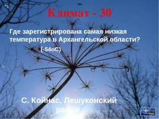 Промыслы - 20 Этими промыслами владел знаменитый русский род Строгановых, вне
