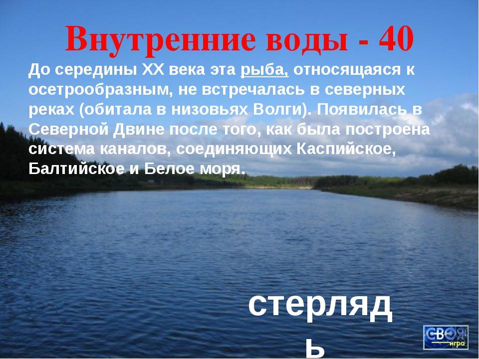 Традиции - 40 По старой традиции в канун Нового года пекут в Архангельске фиг...