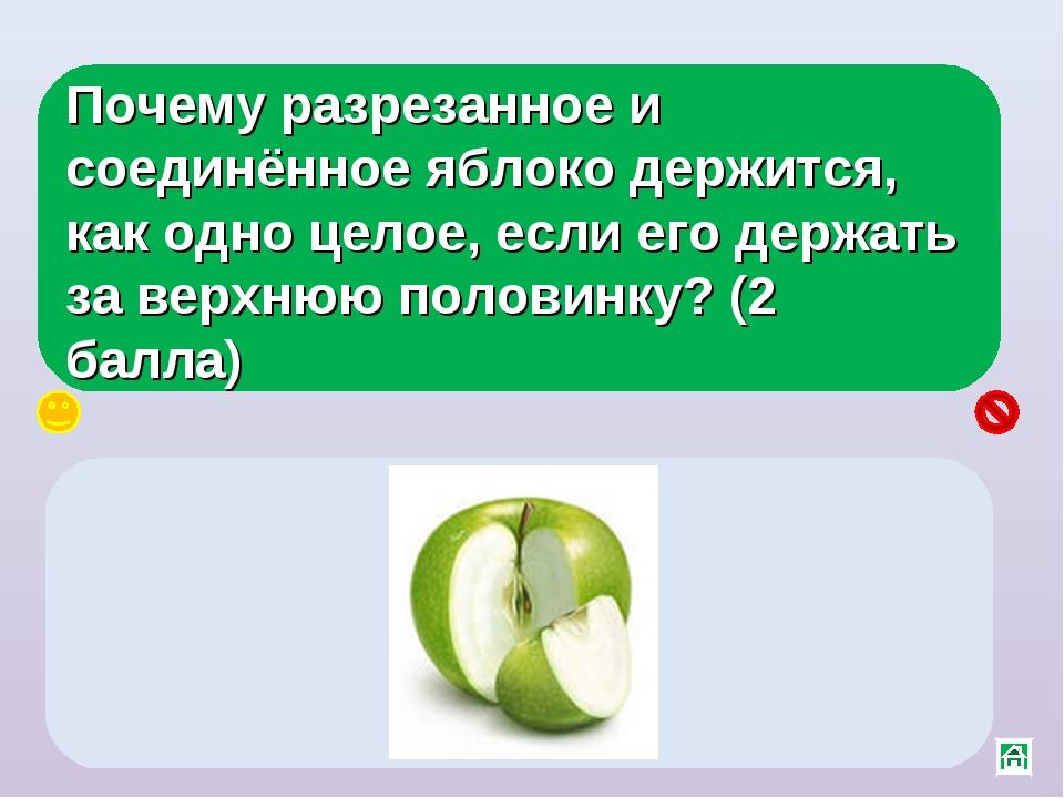 Почему разрезанное и соединённое яблоко держится, как одно целое, если его де...