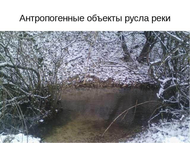 Антропогенные объекты русла реки