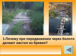1.Почему при передвижении через болото делают настил из бревен? с помощью нас