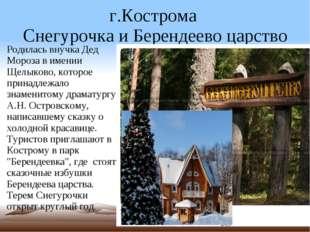 г.Кострома  Снегурочка и Берендеево царство Родилась внучка Дед Мороза в име