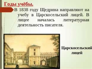 В 1838 году Щедрина направляют на учебу в Царскосельский лицей. В лицее начал