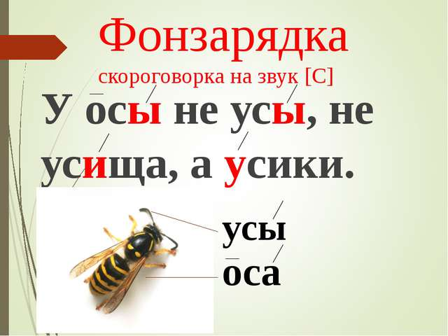 Фонзарядка скороговорка на звук [С] У осы не усы, не усища, а усики. оса усы
