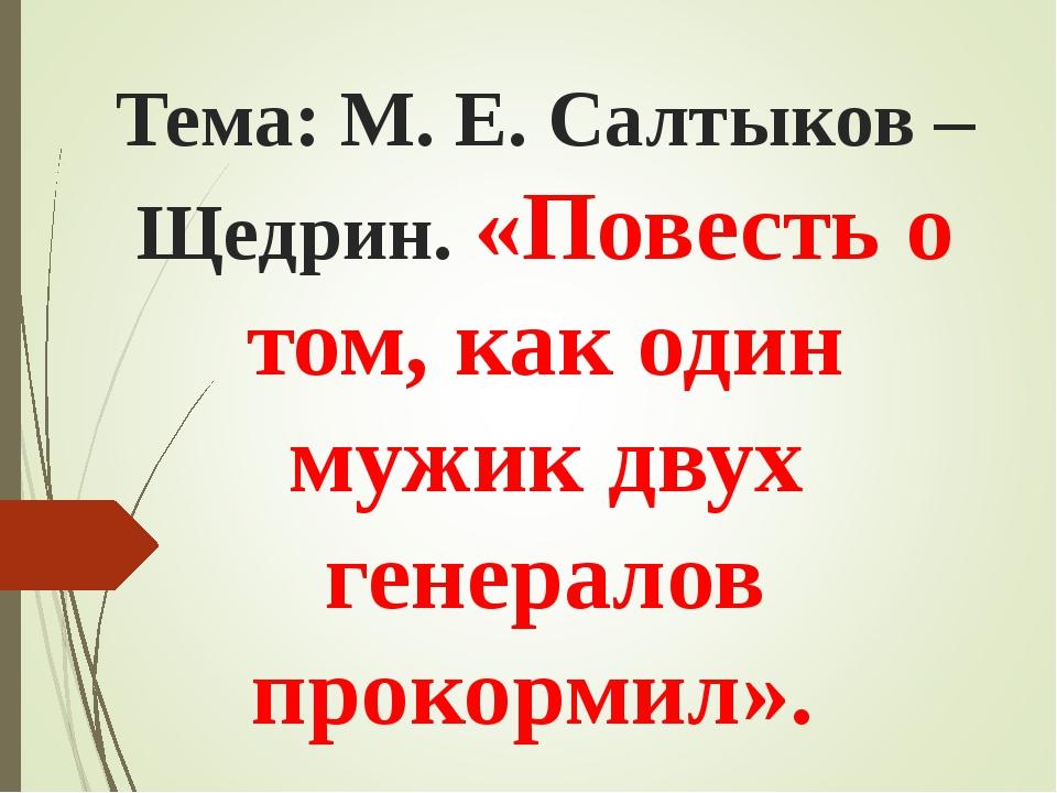 Тема: М. Е. Салтыков –Щедрин. «Повесть о том, как один мужик двух генералов п...