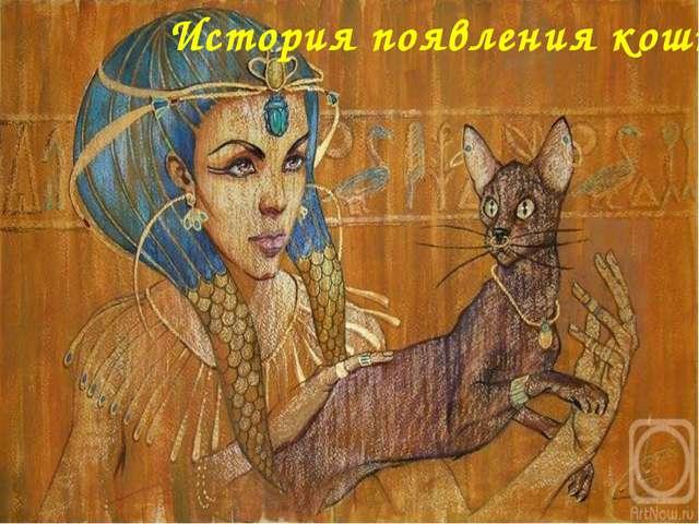 История появления кошки FokinaLida.75@mail.ru