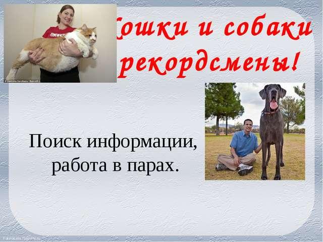 Кошки и собаки рекордсмены! Поиск информации, работа в парах. FokinaLida.75@m...