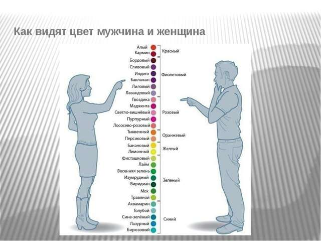Как видят цвет мужчина и женщина