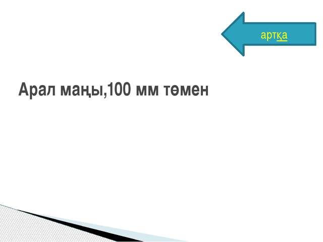 Арал маңы,100 мм төмен артқа