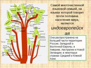 Самой многочисленной языковой семьей, на языках которой говорит почти половин