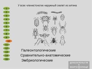 Сравнительно-анатомические Эмбриологические Головастики лягушки имеют рыбообр
