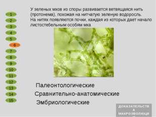 Сравнительно-анатомические Эмбриологические Зародыши всех двудольных растений