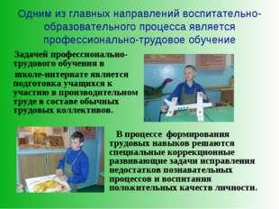 Одним из главных направлений воспитательно-образовательного процесса является