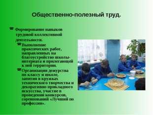 Общественно-полезный труд. Формирование навыков трудовой коллективной деятель