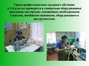 Уроки профессионально-трудового обучения в 5-9 классах проводятся в специальн