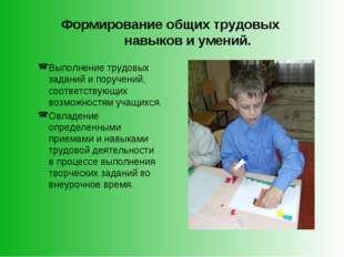 Формирование общих трудовых навыков и умений. Выполнение трудовых заданий и п