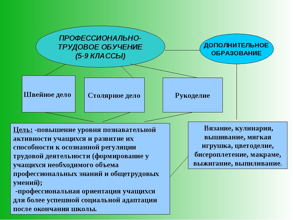 ПРОФЕССИОНАЛЬНО-ТРУДОВОЕ ОБУЧЕНИЕ (5-9 КЛАССЫ) ДОПОЛНИТЕЛЬНОЕ ОБРАЗОВАНИЕ Шве...