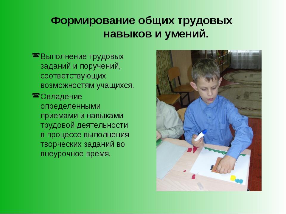 Формирование общих трудовых навыков и умений. Выполнение трудовых заданий и п...