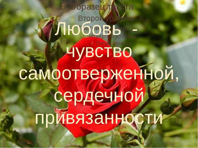 Любовь - чувство самоотверженной, сердечной привязанности