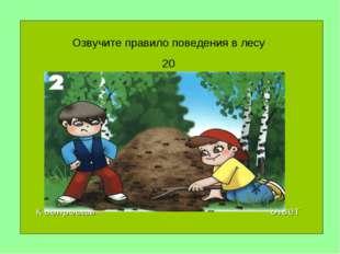 Озвучите правило поведения в лесу 20 к вопросам ответ