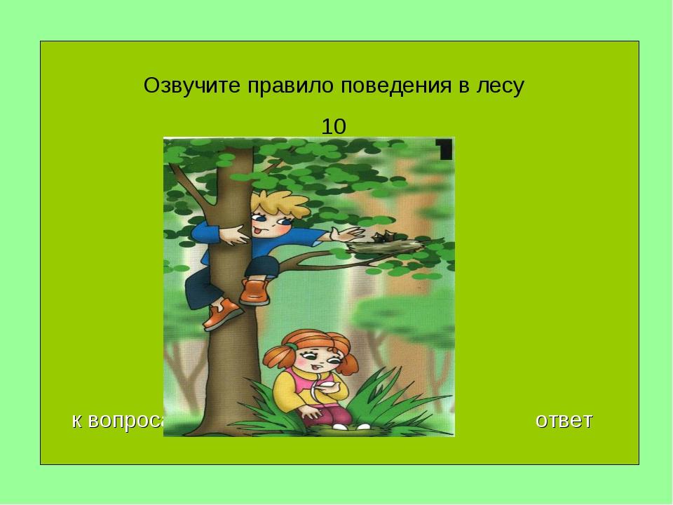 Озвучите правило поведения в лесу 10 к вопросам ответ