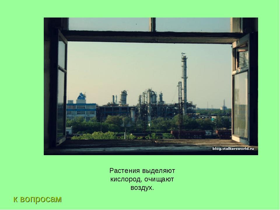 к вопросам Растения выделяют кислород, очищают воздух.