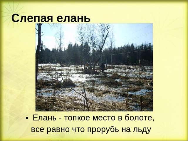 Слепая елань Елань - топкое место в болоте, все равно что прорубь на льду