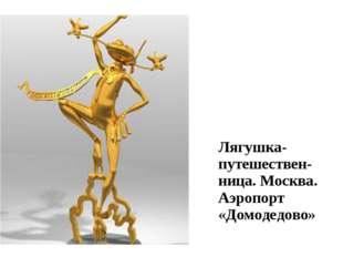 Лягушка-путешествен-ница. Москва. Аэропорт «Домодедово»