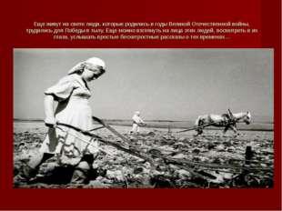 Еще живут на свете люди, которые родились в годы Великой Отечественной войны,