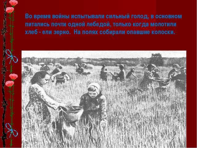 * Во время войны испытывали сильный голод, в основном питались почти одной ле...