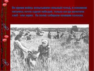 * Во время войны испытывали сильный голод, в основном питались почти одной ле