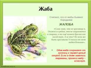 Жаба Считают, что от жабы бывают бородавки ЖАЛОБА «Сама знаю, что не красавиц