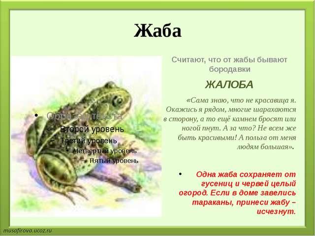 Жаба Считают, что от жабы бывают бородавки ЖАЛОБА «Сама знаю, что не красавиц...