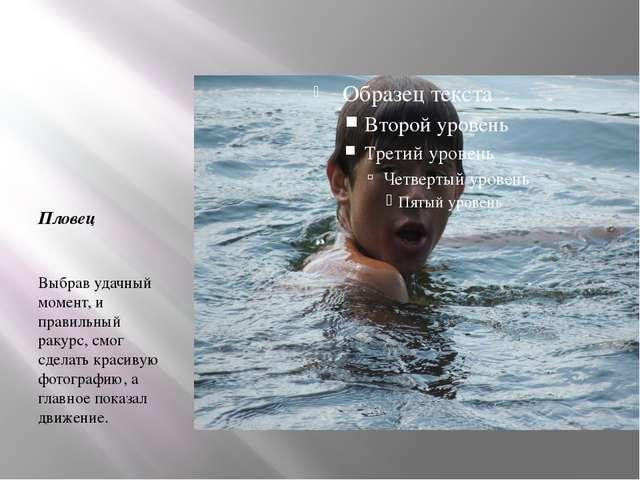 Пловец Выбрав удачный момент, и правильный ракурс, смог сделать красивую фот...