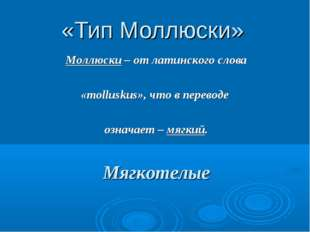 «Тип Моллюски» Моллюски – от латинского слова «molluskus», что в переводе озн