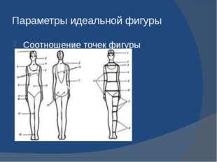 Параметры идеальной фигуры Соотношение точек фигуры