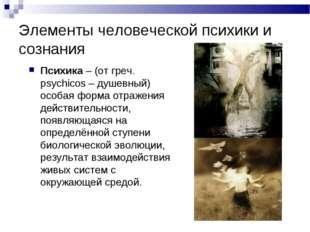 Элементы человеческой психики и сознания Психика – (от греч. psychicos – душе
