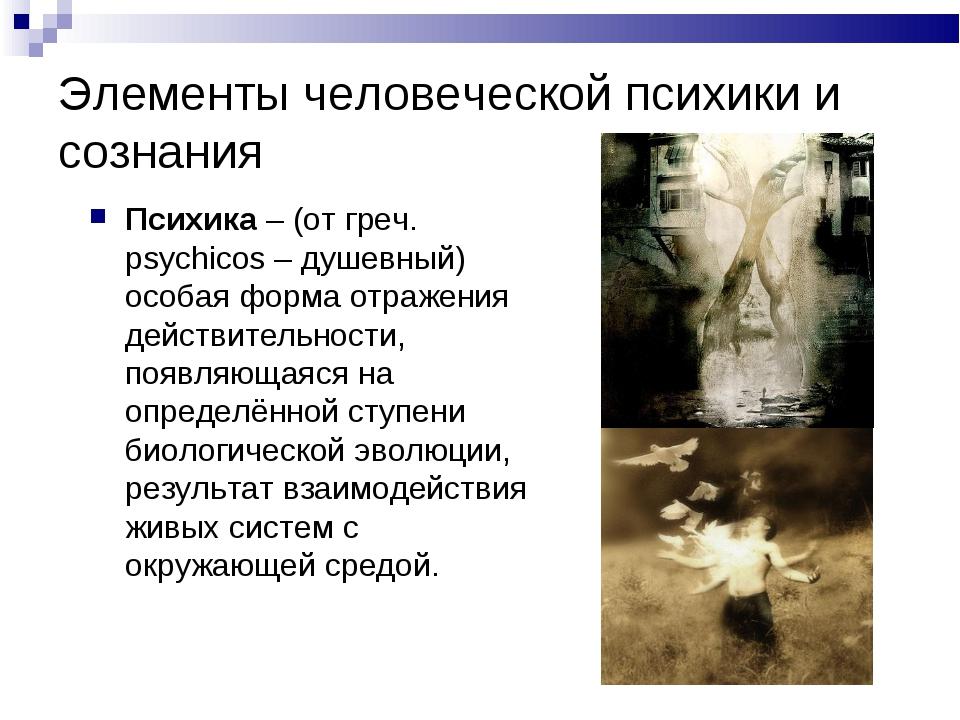 Элементы человеческой психики и сознания Психика – (от греч. psychicos – душе...