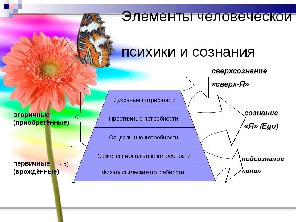 Элементы человеческой психики и сознания первичные (врождённые) вторичные (пр...