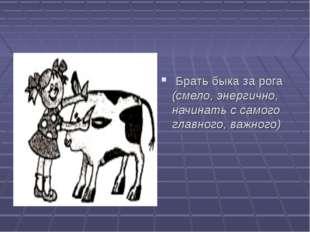 Брать быка за рога (смело, энергично, начинать с самого главного, важного)
