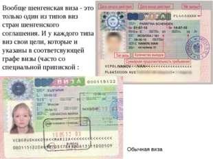 Обычная виза Вообще шенгенская виза - это только один из типов виз стран шенг