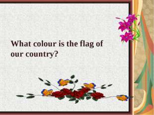 What colour is the flag of our country?