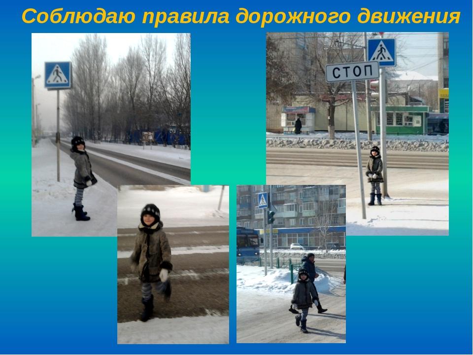 Соблюдаю правила дорожного движения