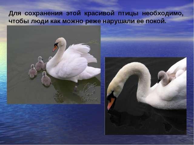Для сохранения этой красивой птицы необходимо, чтобы люди как можно реже нару...