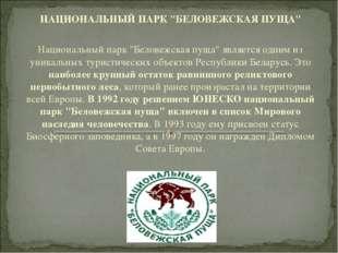 "НАЦИОНАЛЬНЫЙ ПАРК ""БЕЛОВЕЖСКАЯ ПУЩА""   Национальный парк ""Беловежская пуща"""