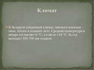 В Беларуси умеренный климат, мягкая и влажная зима, теплое и влажное лето. Ср
